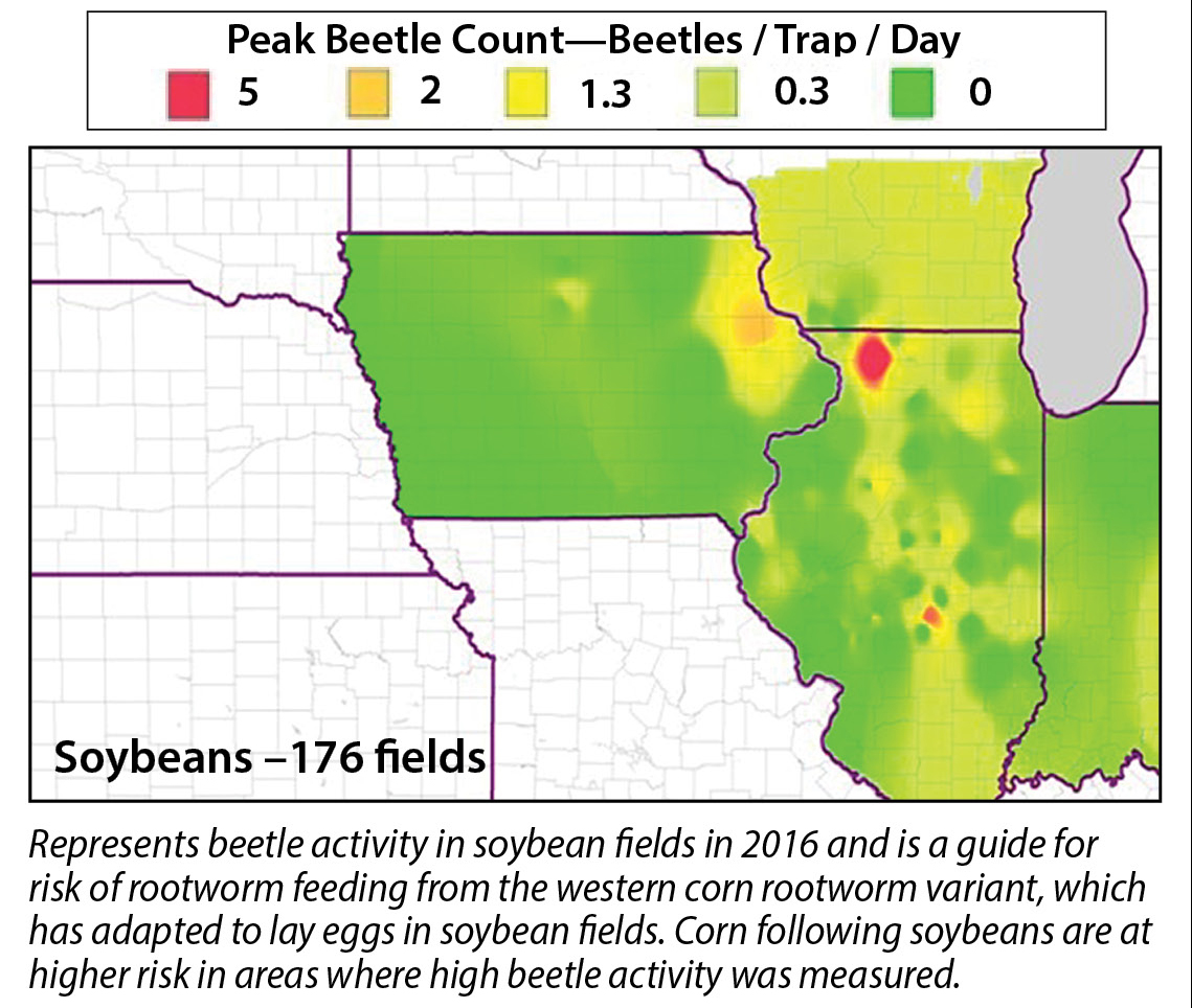 Wyffels hybrids these maps may not necessarily describe rootworm activity or risk at a field level as rootworm populations vary widely from field to field nvjuhfo Images